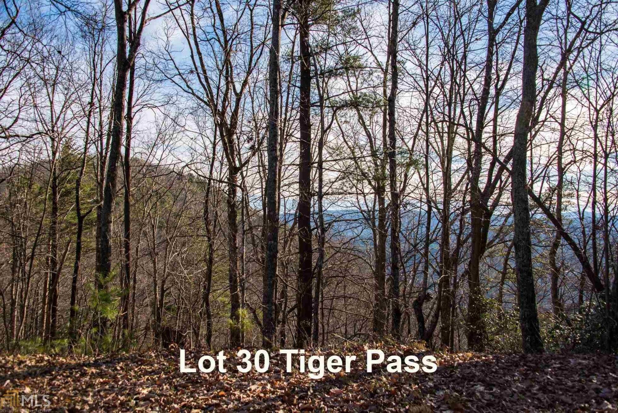 0 Tiger Pass, Tiger GA 30576